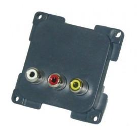 C-Line Audio & S-Video Socket